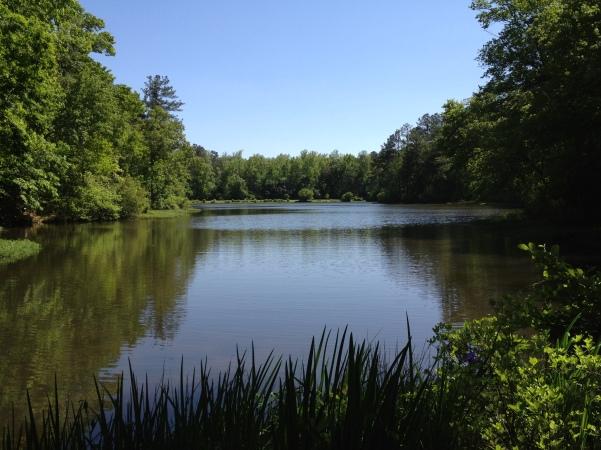 Callaway Lake