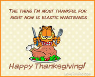 216852-garfield-happy-thanksgiving-quote